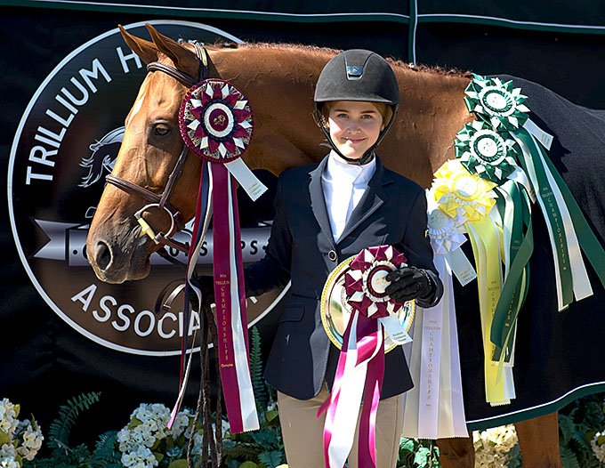Taylor Brooks Equestrian Show Team at Bronze, Silver and Gold Hunter Jumper Equitation Shows