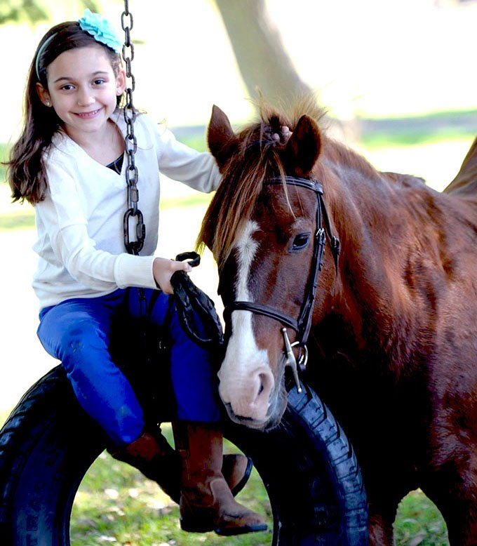 Riding Lessons at Wynbrook Farm