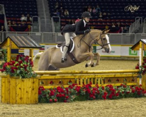 2015 Royal Agricultural Winter Fair